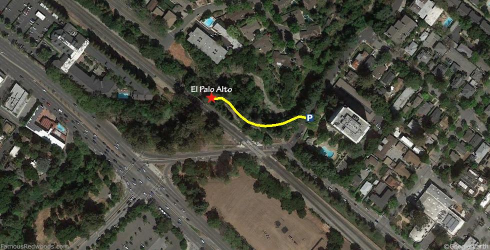El Palo Alto Tree Hike Map El